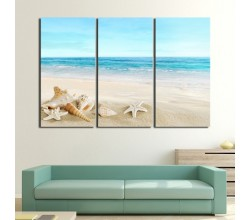 Blue Beach and Shells Picture on Paintings by Arti
