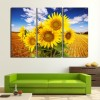 Sunflower in the Wheat Field Photo Canvas Art to Buy