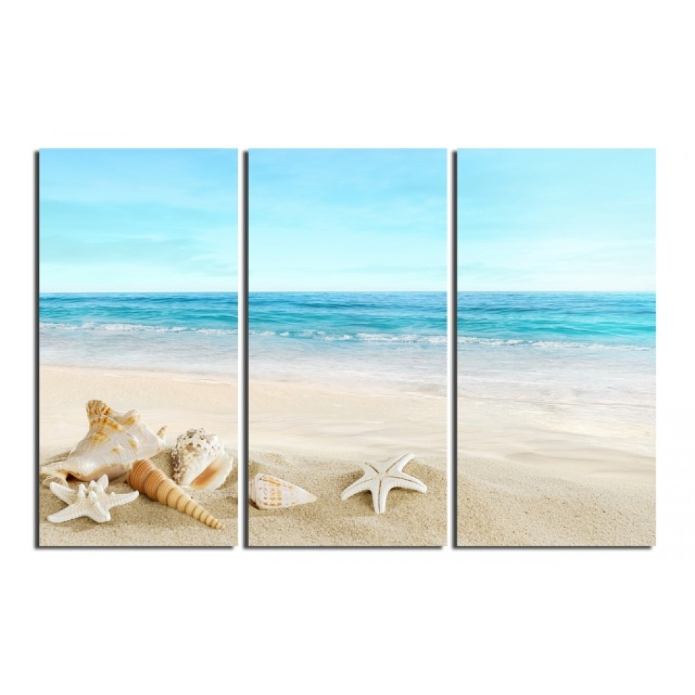 Blue Beach and Shells Picture on Paintings by Artist
