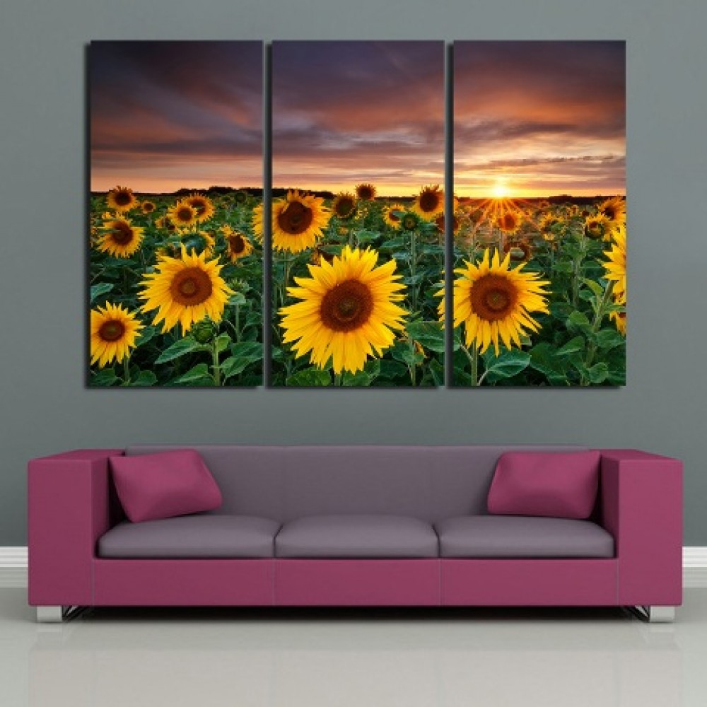 Sunflower Sea Pictures of Fine Art Paintings